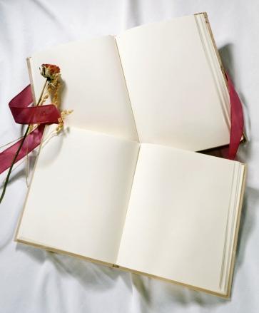 Свадебная книга,свадьба