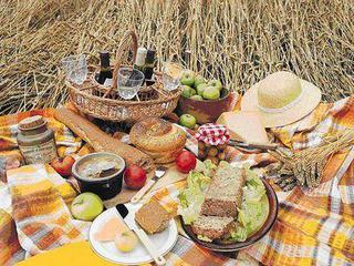 жара,пикник,пищевые отравления,здоровье,осторожность,как избежать пищевых отравлений в жаркую погоду,Осторожность на пикнике,подготовка к пикнику