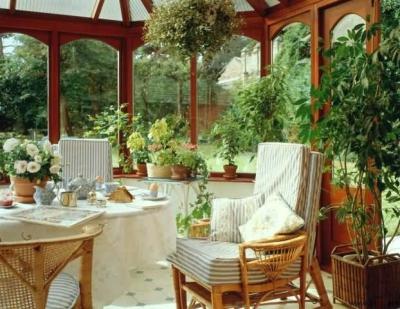 растения,дом,воздух,влага,энергетика