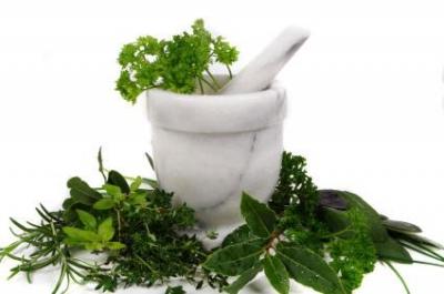 травы,травы для похудения,корень алтея,льняное семя,водоросли спирулина,дягиль лекарственный,медвежьи ушки,полевой хвощ,лопух