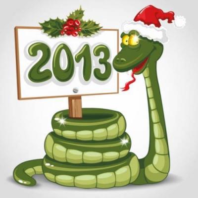 новый год,год змеи,2013 год,праздник,знаки зодиака,гороскоп,встреча,одежда,цвета одежды
