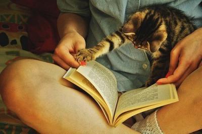 книги,читать книги,польза,мозг,сон,память,стресс,мышление