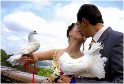 свадьба,год,года,жених,невеста,муж,жена,праздник