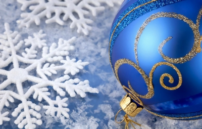 2014 год,год лошади,синяя лошадь,новый год,встреча,стол,одежда,квартира,подарки,елка,украшение,зима,снег