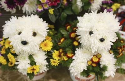 идеи,8 марта,подарки,цветы,оригинальные идеи,международный женский день