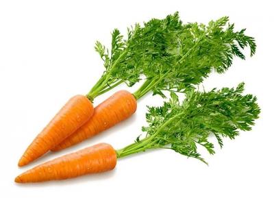полив,огород,овощи,капуста,картофель,огурцы,томаты,морковь,тыква,чеснок,лук,свекла,баклажаны