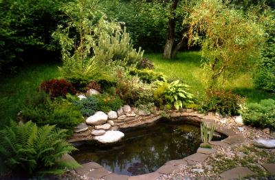 сад,водоем,участок,дача,технология,искусствееный водоем,пруд,вода,зелень