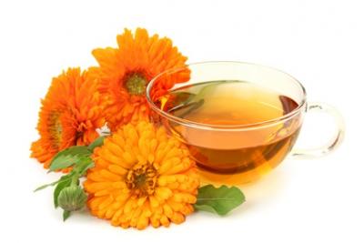 календула,растение,свойства,лечение,лето,рецепты