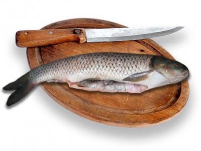 рыба,морская рыба,океанская рыба,советы,кухня,готовка