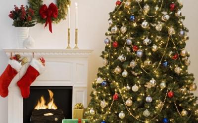фен шуй,новогодняя елка,елка,праздник,украшение,дети,любовь,друзья,богадство