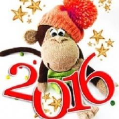 новый год,обезьяна,встреча,праздник,одежда,стол,2016 год