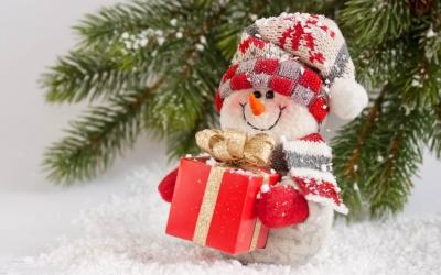 подарки,новый год,новогодние подарки,год обезьяны,мама,бабушка,дедушка,папа,брат,дети,подростки,муж,любимый мужчина